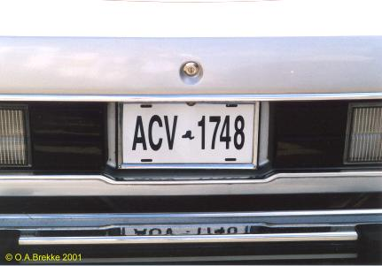 USA New York normal series replacement plate ACV 1748.jpg (20 kB)